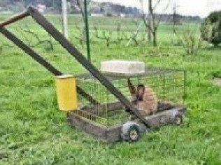 My new lawnmower.